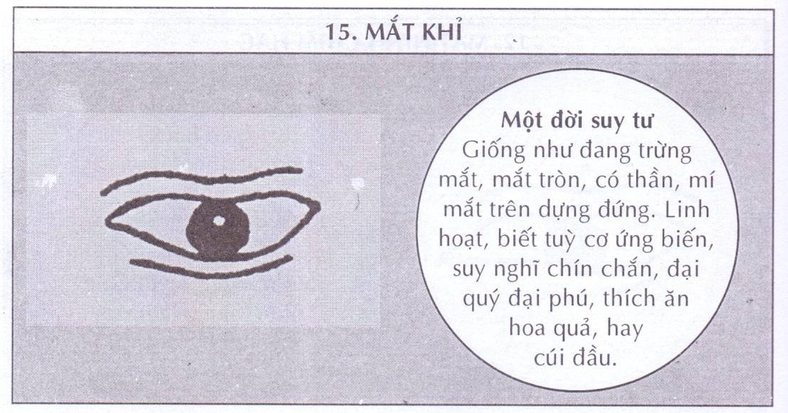 Mắt khỉ