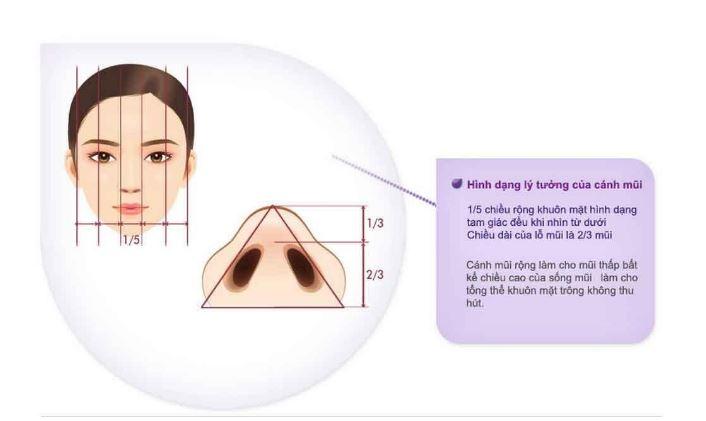 Phương pháp cắt cánh mũi là gì