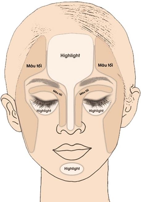 Các vị trí cần được tạo khối sáng - tối để che khuyết điểm mũi tẹt.