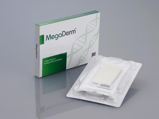 Megaderm được chiết xuất từ tế bào biểu bì của con người